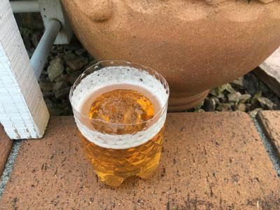 ビールトラップ